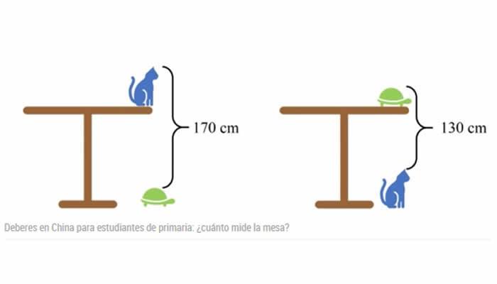 ¿Resolvería usted, este problema matemático utilizando un gato y una tortuga como medida?